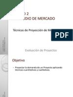 06 Tecnica de Proyeccion de Mercado