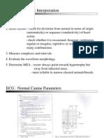ECG Analysis and Interpretation