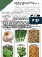 Sazonadores Naturales 001.pdf