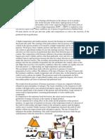 pyrolysis of biomass report