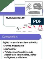 Tejido Muscular Clase