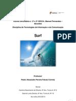 Surf Trabalho Tic