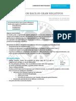 infecciones-por-bacilos-gram-negativos.pdf
