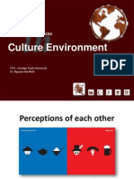 Chapter 4 - Culture Environment