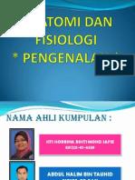 pengenalan anatomidan fisiologi