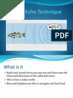 Pulse Echo Technique and Doppler