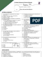 Evaluación de Síntesis de Ciencias Naturales 6° Básicos Primer Semestre