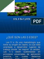 Programa 5 ESES (5 S).ppt