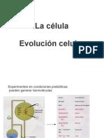 1- La Celula-evolucion Celular