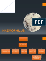 HEAMOPHILUS