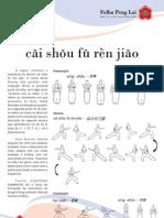 тао ушу  07 folha peng lai 2011.pdf