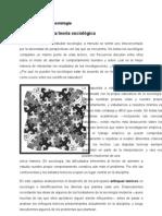 Desarrollo de La Teoria Sociologica-1