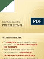 poder de mercado.pdf
