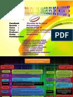 Protocolo Espec Odontolog- Mapa