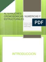 Cromosomas humanos.pptx