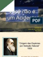 Voce_nao_e_um_acidente