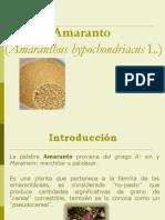 Presentación Amaranto
