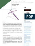 Ortopedia & Traumatologia_ Os Princípios Gerais da Osteossíntese