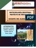 Bioetanol - Octavo Semestre