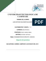 Reporte de La Punta Logica
