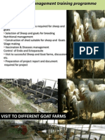 Goat Farming in Tamil Nadu