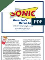 sonic campaign book