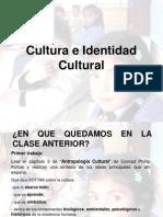 Cultura e Identidad Cultural 1220011929626067 9