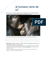 La Moral Humana Viene de Los Simios