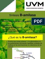 b-amilasa-120909151834-phpapp02