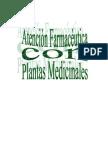 Anon - Plantas Medicinales