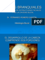 arcosbranquiales-100518190727-phpapp01