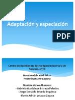 Adaptación y especiación