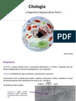 aulaorganelascelularesi-111010215121-phpapp02