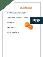 La Naranja- Llubitza Yupanqui Castro