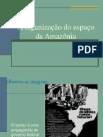 1 Amazonia Organizacao 2