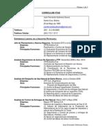 Curriculum Vitae JF (2013.05.09)