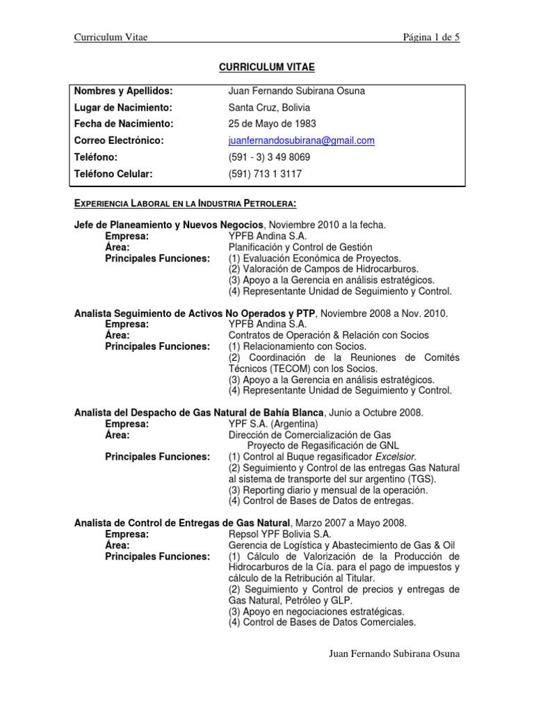 Excelente Muestra De Curriculum Vitae Para Su Apoyo Analista ...