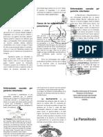 Triptico Las Parasitosis y El Parasitismo