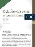 Ciclos de Vida de Las Organizaciones