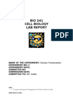 22749989-LAB-REPORT-8