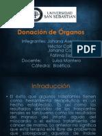 Donación de Órganos.ppt