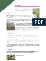 Cultivo de Orquídeas.doc