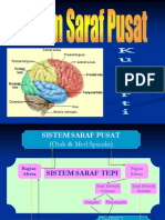 Sistem Saraf Pusat_faal