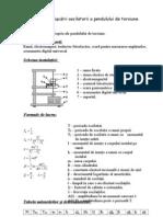 Lab15 [Studiul Miscarii Oscilatorii a Pendulului de Torsiune