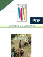 AGENDA – JUNIO 2013
