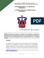 EL AMPARO EN MATERIA PENAL Y EL AMPARO DE.pdf