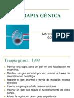 4-Terapia génica