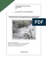 Bioperturbación del suelo por pequeños roedores excavadores del género Ctenomys