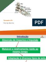 Aula 12- Tornozelo pé marcha PDF