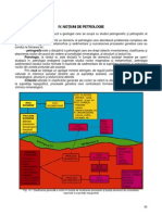 04. Introducere in Geologie - Curs 04 - Petrologie Magmatica